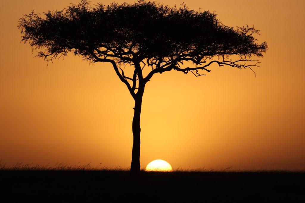 ケニアの夕陽