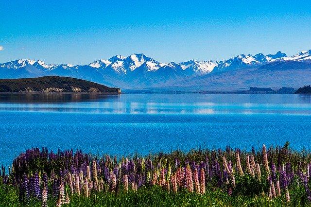 春のテカポ湖