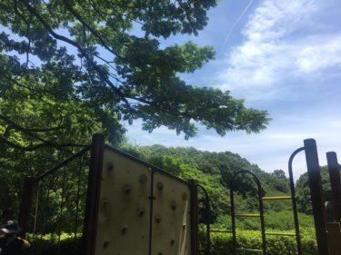 横浜の市街地に広がる里山風景の「四季の森公園」。夏は蛍狩りや水遊びも