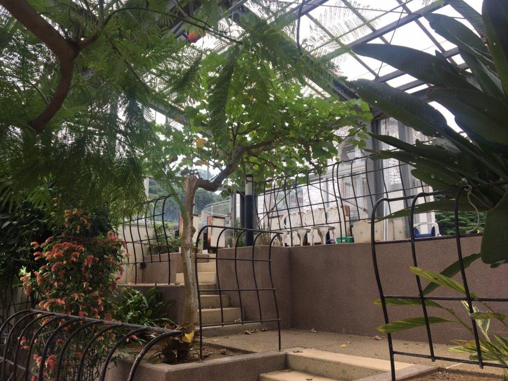 くりはま花の国グリーンハウス(温室)