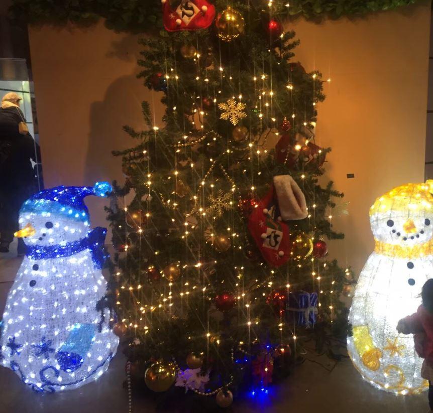 金沢自然公園・金沢動物園なかよしトンネルクリスマスツリー