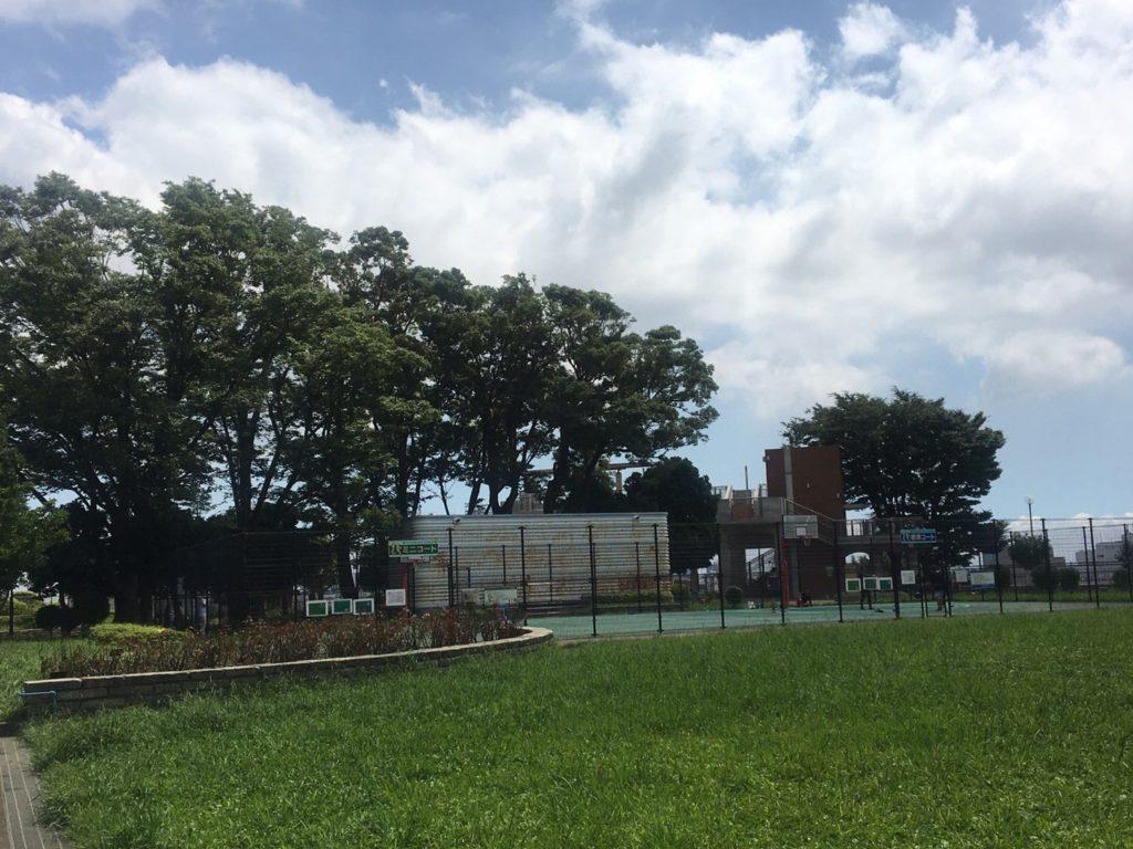 野毛山公園 展望地区 バスケットコート