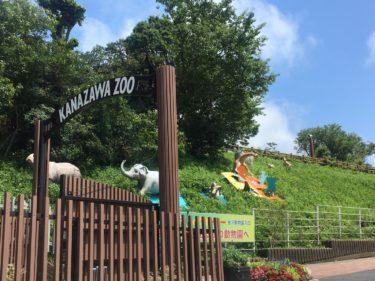 金沢動物園のある金沢自然公園には横浜最大級のローラーすべり台があります!