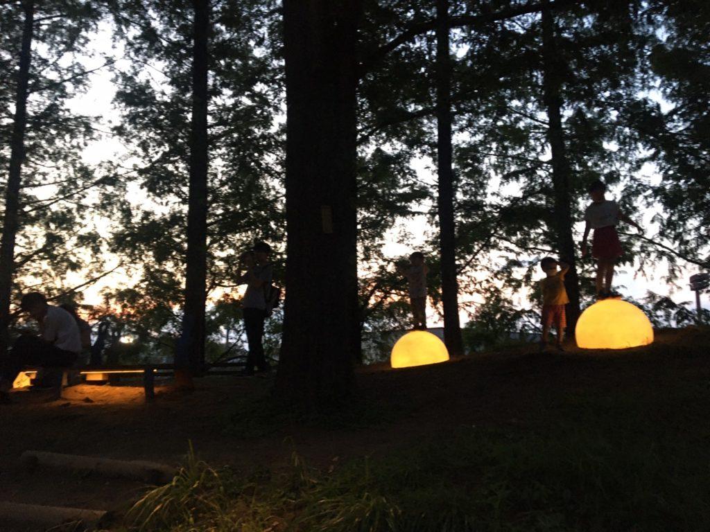 トーベ・ヤンソンあけぼの子どもの森公園・あけぼの杉林