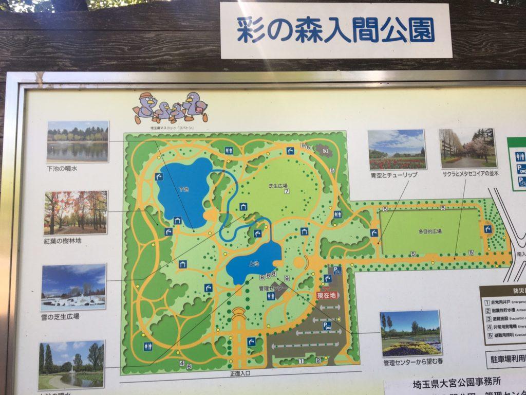 彩の森入間公園マップ