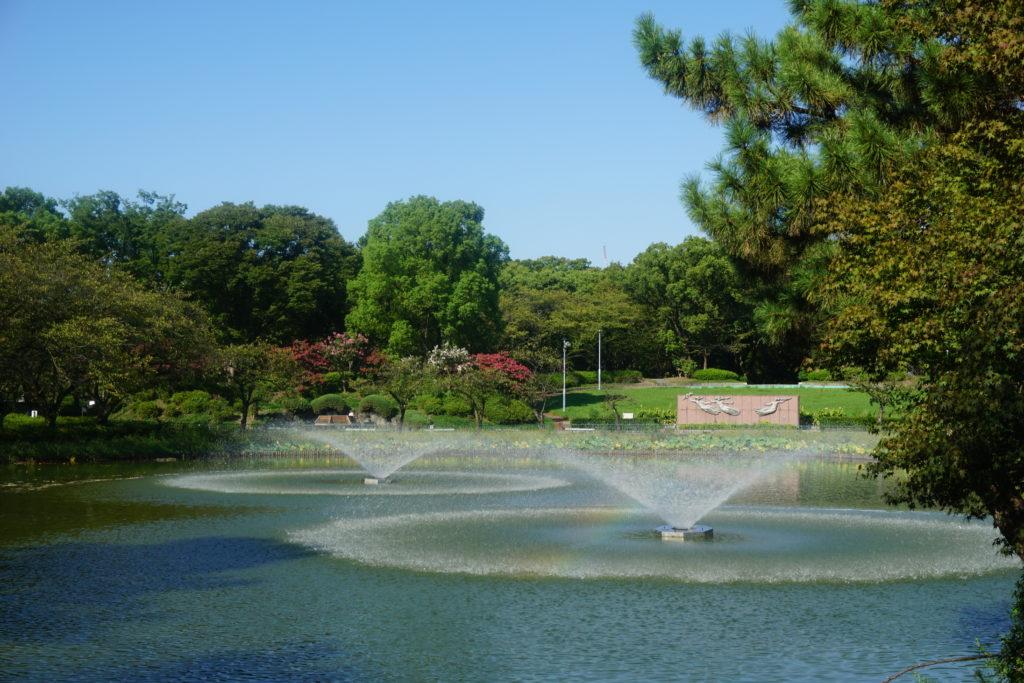 名城公園 おふけ池