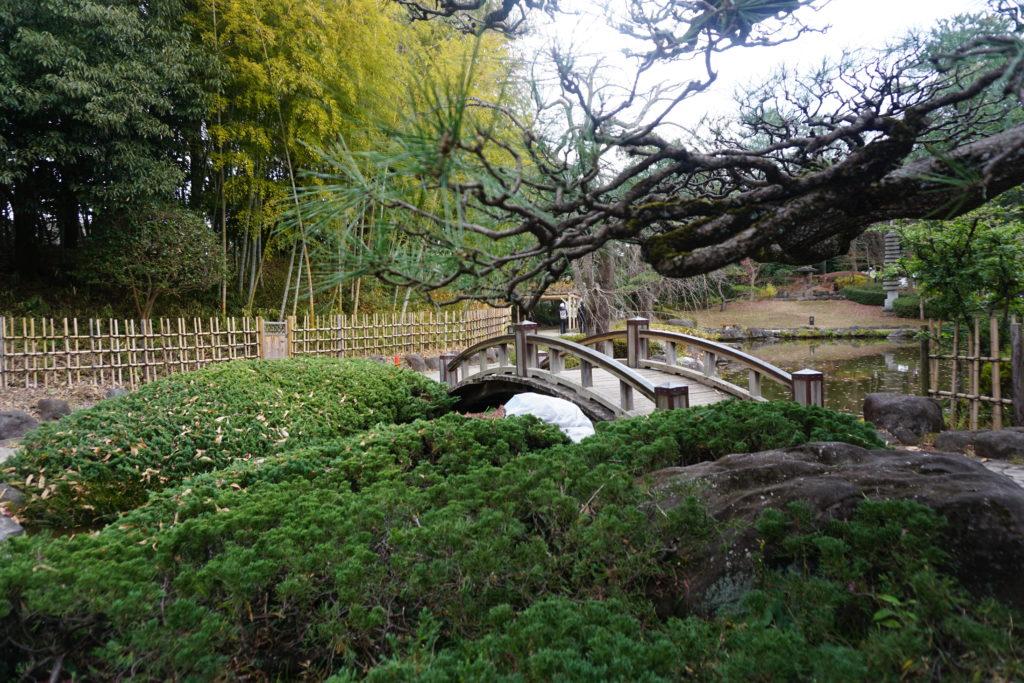 平塚市総合公園日本庭園私たちはどうかしている