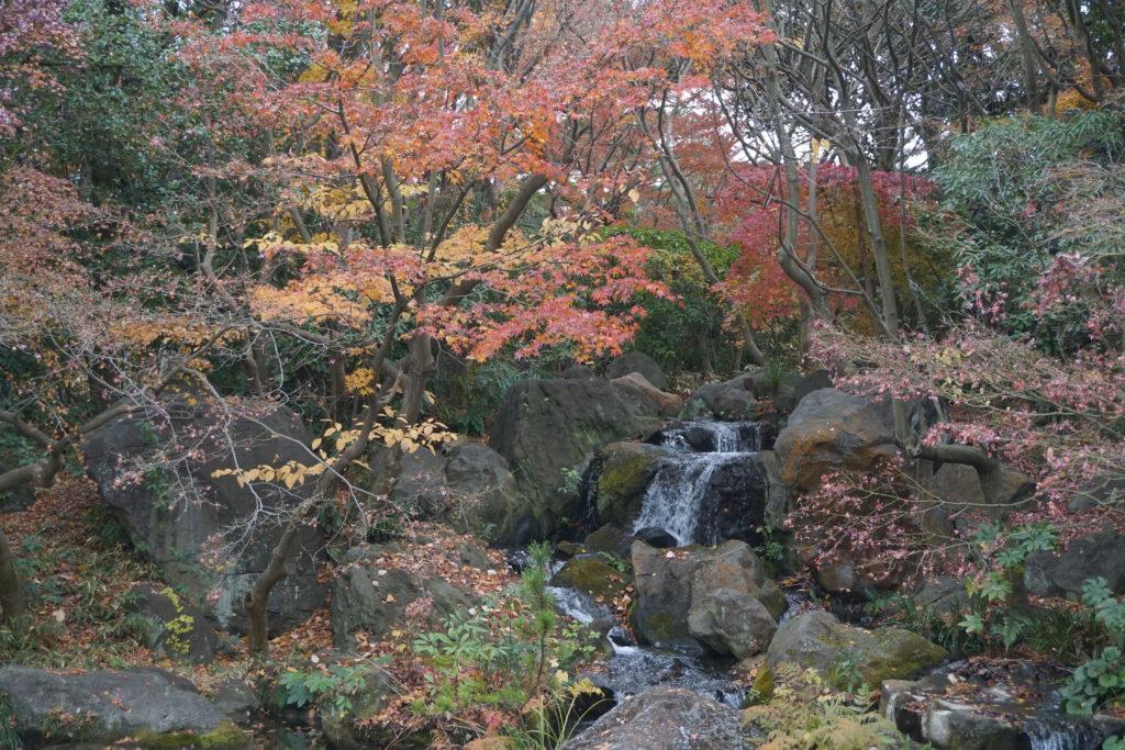 平塚市総合公園日本庭園