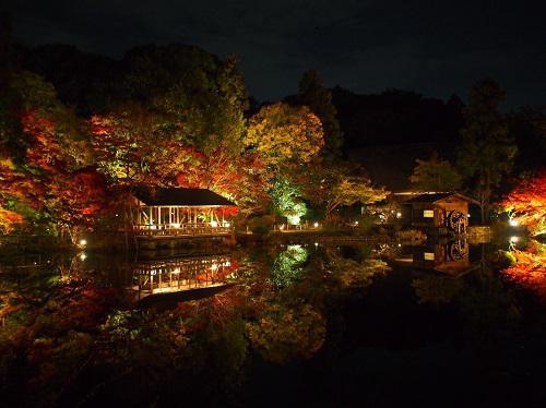 東山動植物園 紅葉ライトアップ 逆さもみじ