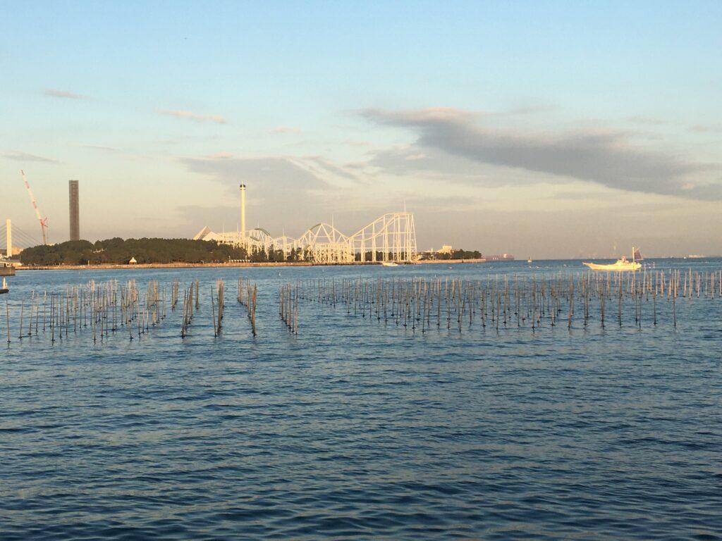 野島公園 海苔養殖