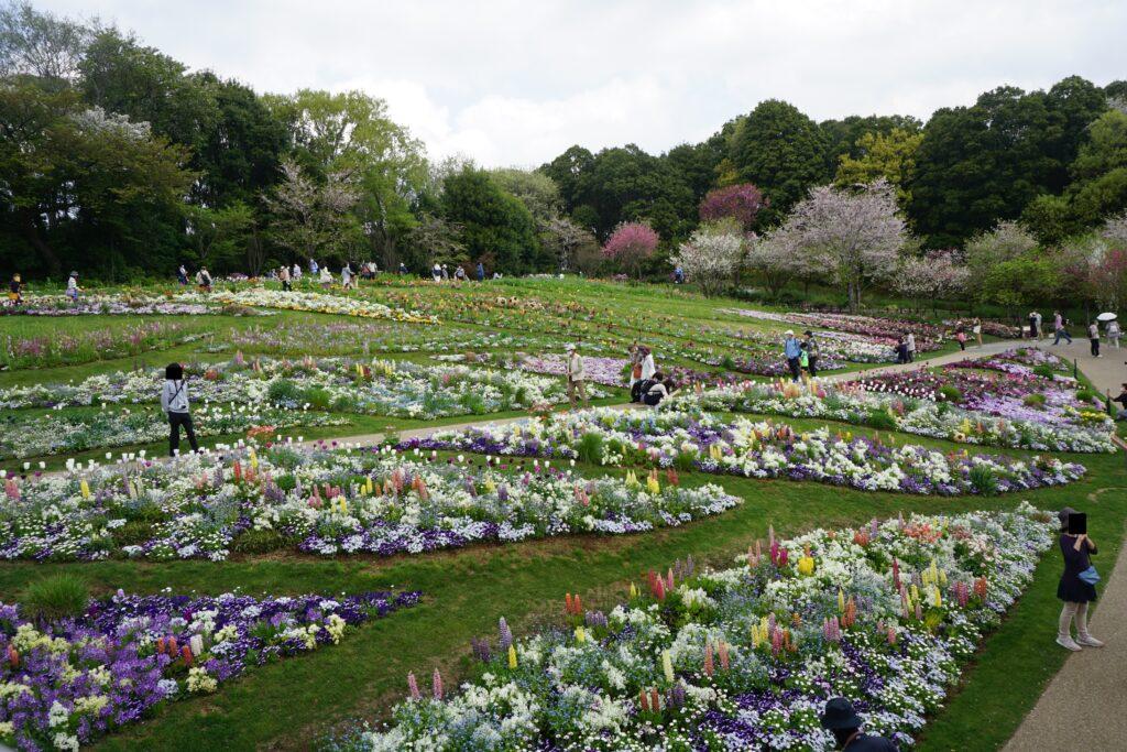 2021春・里山ガーデン