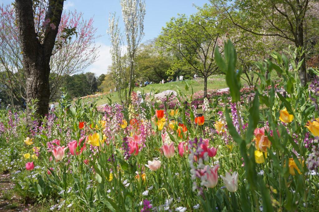 2021春の里山ガーデンフェスタ