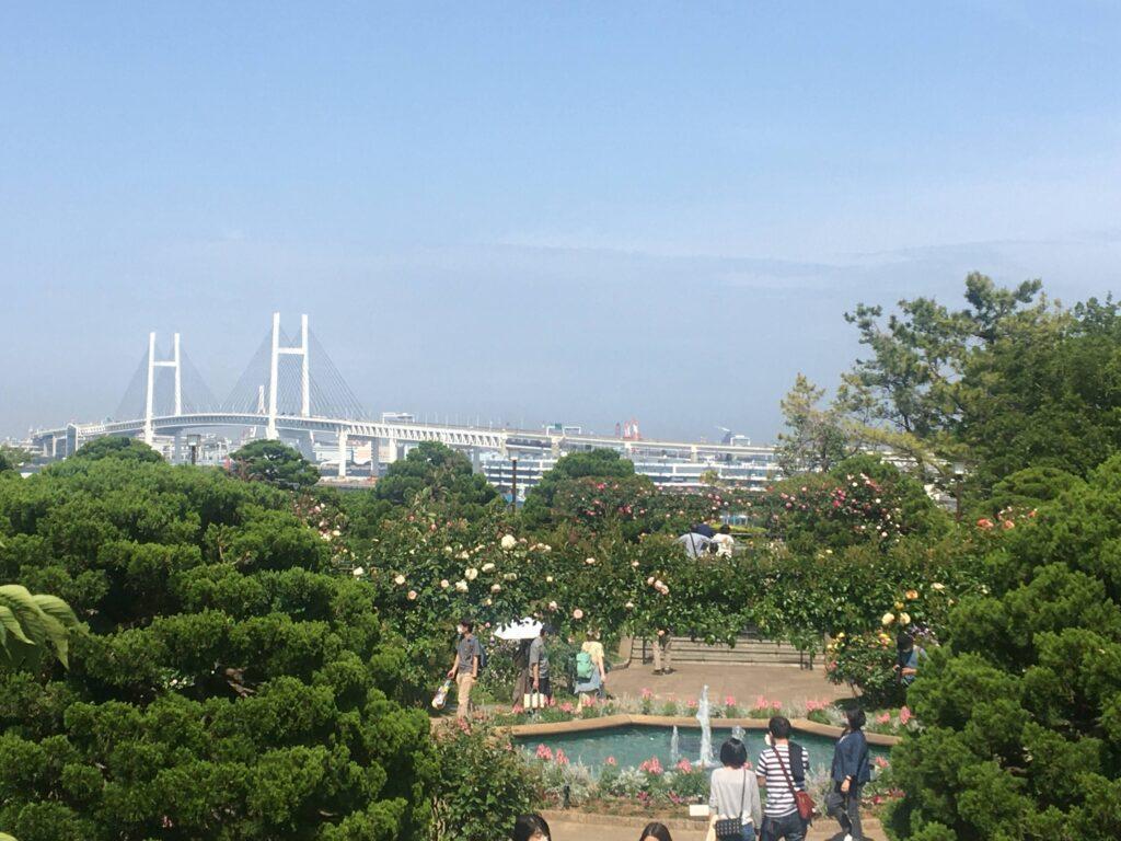 港の見える丘公園「香りの庭」 2021年5月初旬撮影